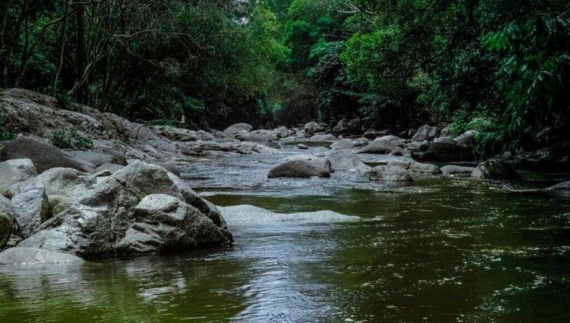 river2001